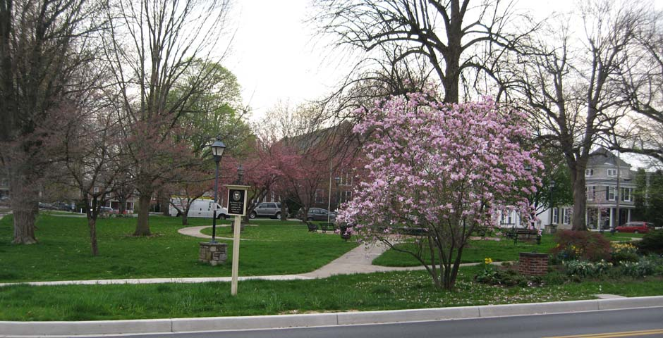 Belle Grove Square Park in the Spring
